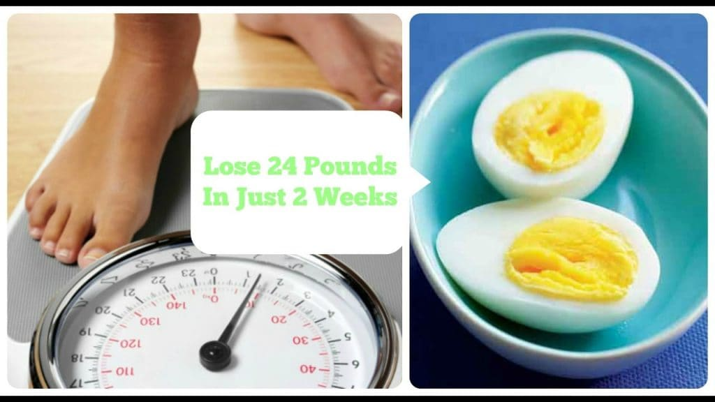 weightlosswitheggs