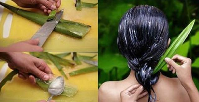 aloevera-hair-mask